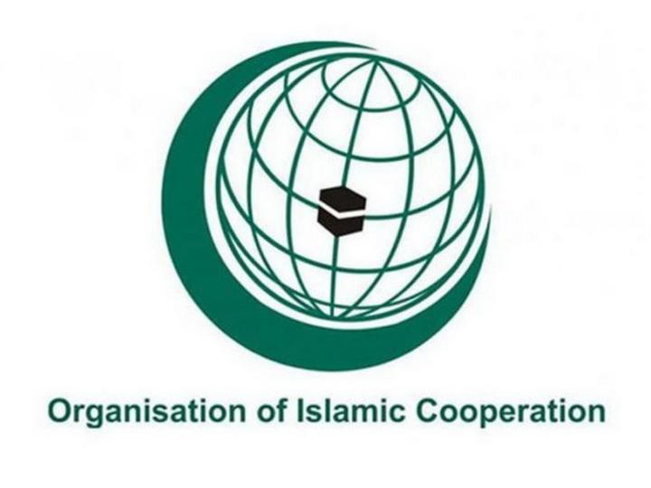 Организация исламского сотрудничества приняла резолюции в связи с агрессией Армении