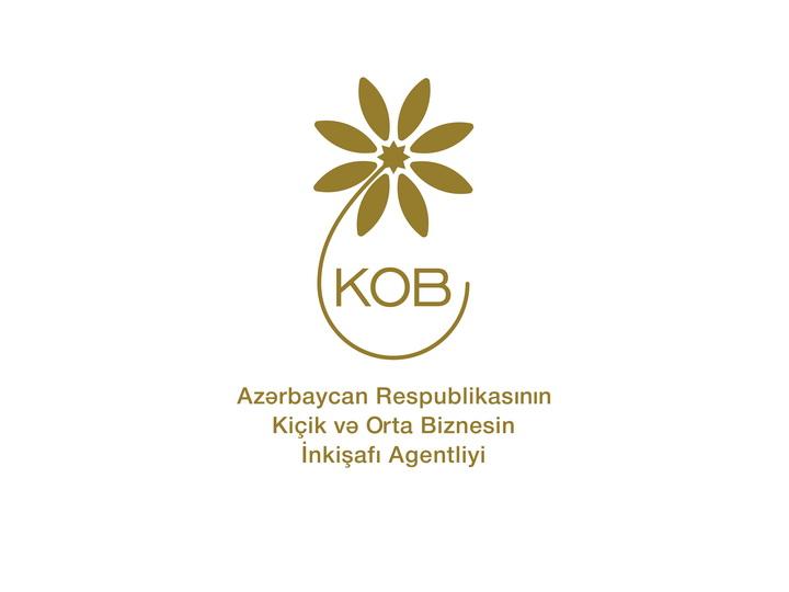 В Азербайджане лицам с ограниченными возможностями оказывается поддержка для создания и развития бизнеса