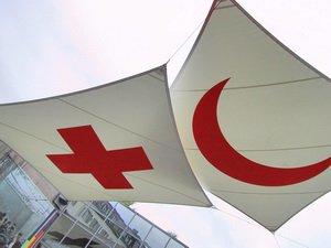 «Красный крест» поднял вопрос в связи с распространением фото человека, похожего на Мубариза Ибрагимова
