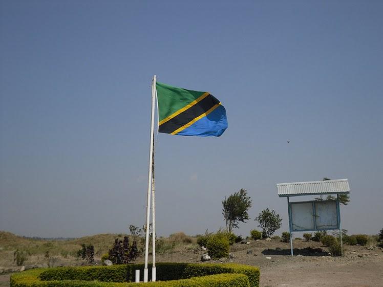 Действующий глава Танзании лидирует на выборах президента страны