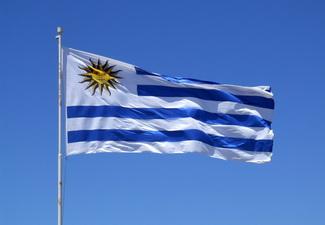 Уругвай поддерживает территориальную целостность Азербайджана – МИД Уругвая