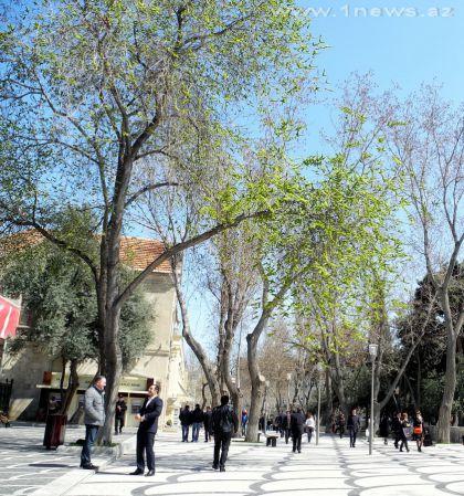 Городские зарисовки: Баку 2013