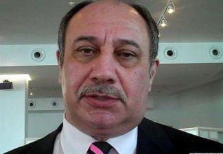 Араз Ализаде: «Молдавский омбудсмен Аурелия Григориу открыто преследуется армянами за то, что говорит правду»