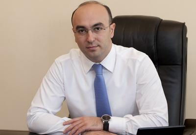 Эльнур Асланов: «Цифры, отмеченные Рамизом Мехтиевым, озвучивались послом США на встречах с членами правительства Азербайджана»
