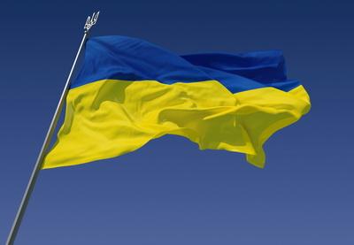 «Евромайдан», или Почему лихорадит Украину