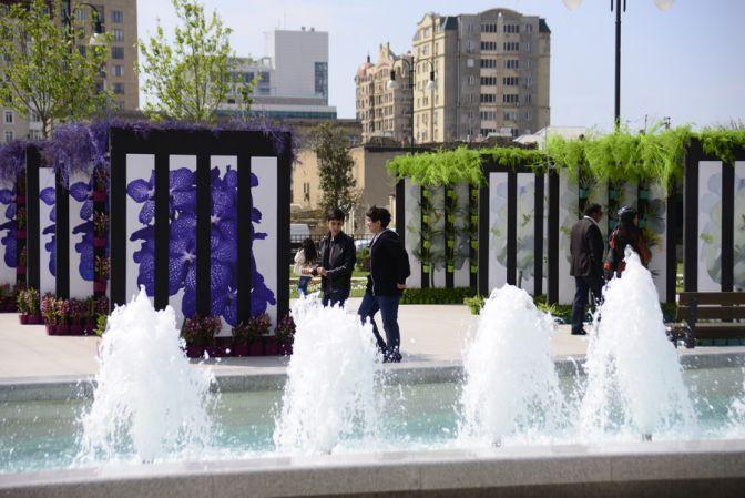 Праздник цветов в Баку. Фото