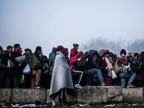 Канцлер Австрии призвал Германию ввести квоту наприем мигрантов