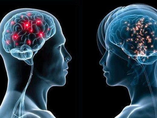 flash как работает женский мозг:
