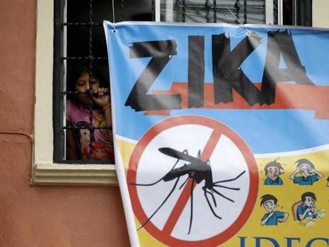 ВНорвегии подтверждены три случая заражения вирусом Зика