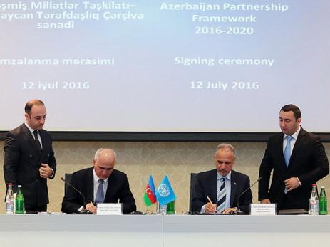 Договор Взаимного Сотрудничества образец