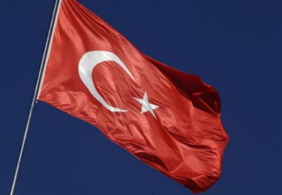 Натерриторию Сирии вошли еще десять танковВС Турции
