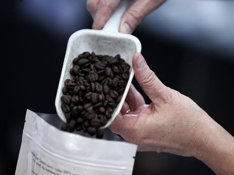 Кофе наЗемле небудет уже к 2080-ому году — Ученые