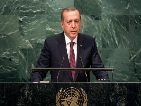Эрдоган назвал цель операции Турции вСирии