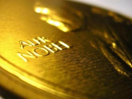 Нобелевскую премию вобласти медицины дали «заоткрытие механизма аутофагии»