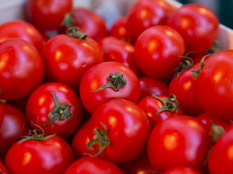 Ученые узнали, почему помидоры вхолодильнике теряют вкус