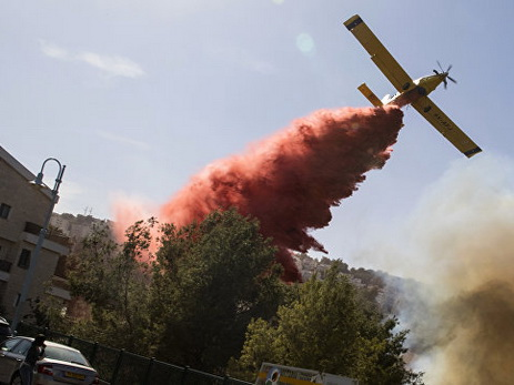 Пожары вИзраиле: милиция задержала 13 подозреваемых вподжогах