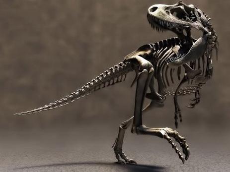 ВМьянме вкуске янтаря нашли хвост миниатюрного динозавра