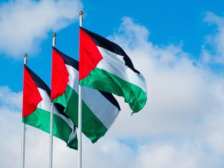 Посольство Палестины: Есть силы, пытающиеся внести раздор в азербайджано-палестинское братство - ФОТО