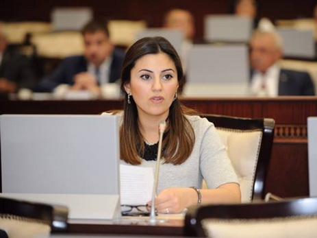 Депутат: Сегодня Милли Меджлис продолжает демократические традиции парламента АДР