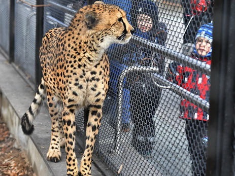 Посетители Московского зоопарка с«птичьими» фамилиями получат скидку