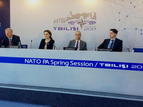 Намероприятии НАТО вТбилиси говорили онагорно-карабахском конфликте