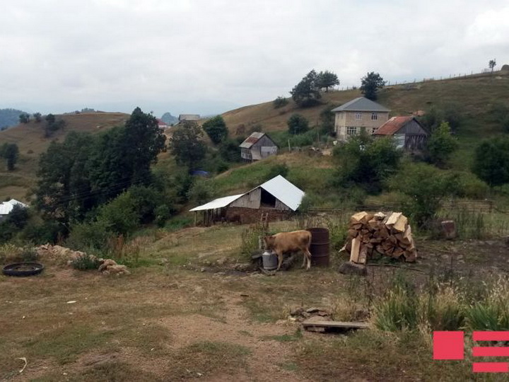 В итоге обстрела армянами села Гаралар Товузского района домам нанесен вред