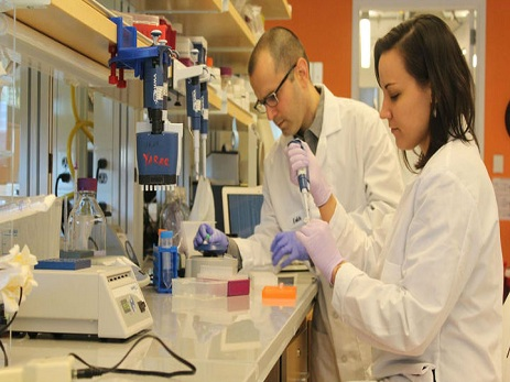 Ученые смогли обратить старение клеток вспять