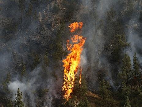 Ermənistan meşə yanğınlarının söndürülməsi üçün Rusiyadan kömək istədi