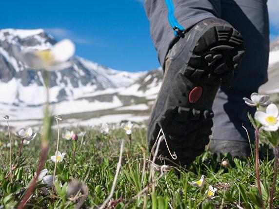 В Японии 74-летний альпинист неделю ждал спасателей