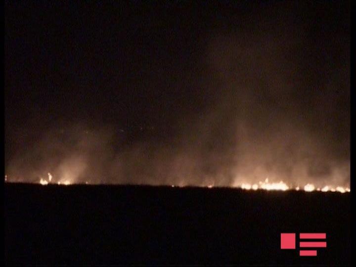Армяне устроили пожар на оккупированных территориях Азербайджана