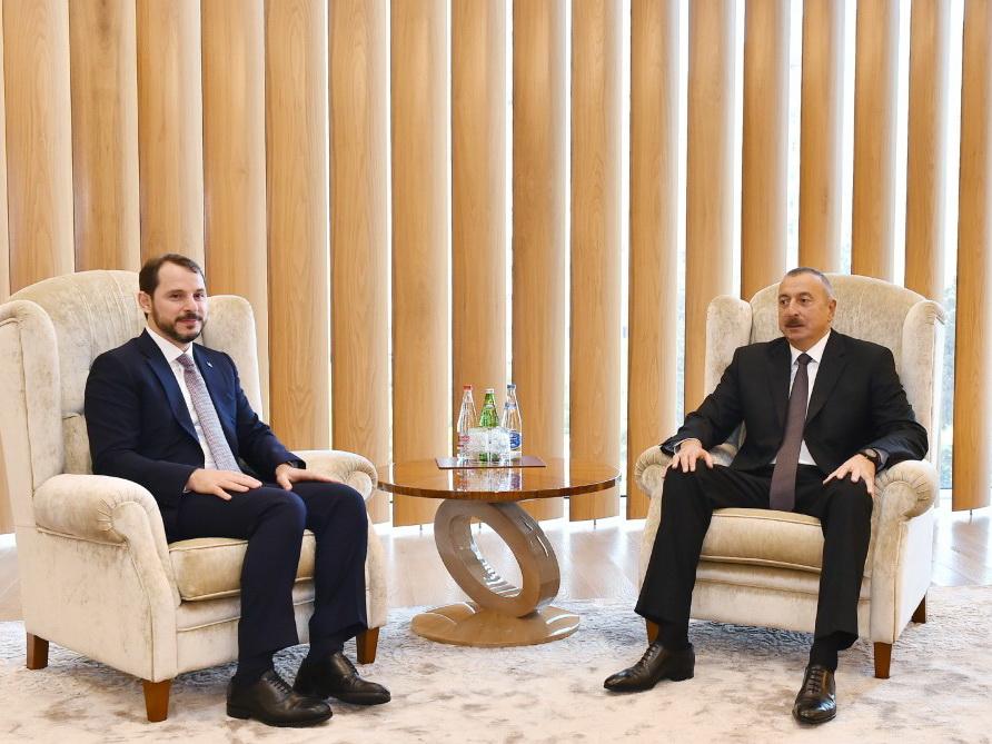 Президент Азербайджана Ильхам Алиев встретился с министром энергетики и природных ресурсов Турции - ФОТО
