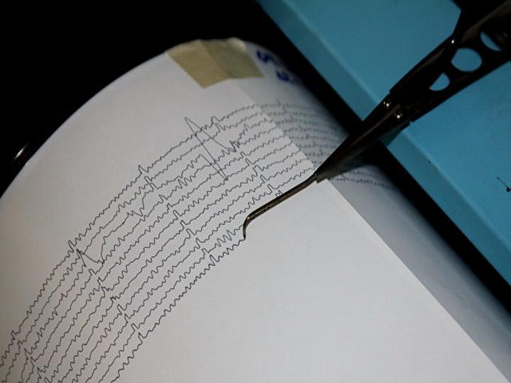 Землетрясение магнитудой 4,6 зарегистрировано уКомандорских островов— Срочно вномер